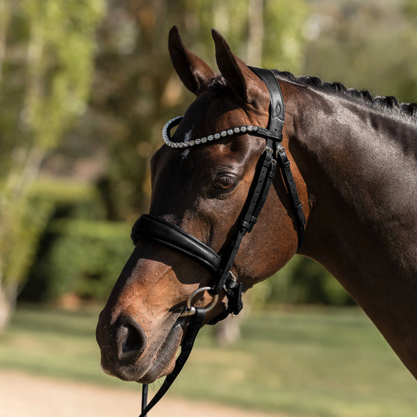 'Abigail' black Italian leather bridle - Lumiere Equestrian