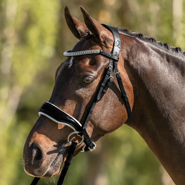 'Adeline' Italian leather bridle (cavesson) - black - Lumiere Equestrian
