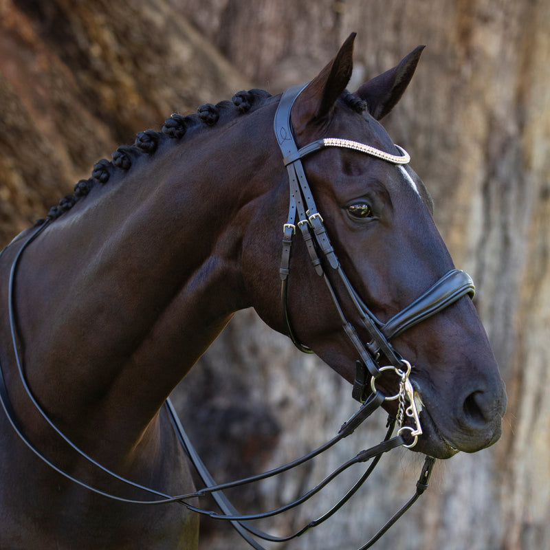 'Madeline' Italian leather double bridle - Lumiere Equestrian