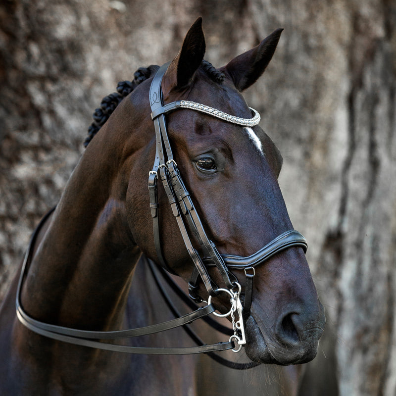 'Mila' Italian leather double bridle - Lumiere Equestrian