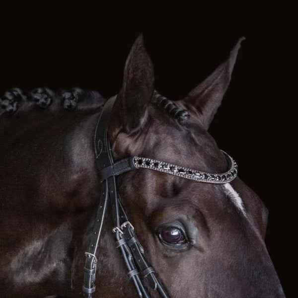 'Audrey' black Italian leather bridle - Lumiere Equestrian