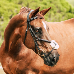 'Ava' Italian leather grackle bridle - black & brown - Lumiere Equestrian