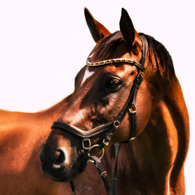 'Amber' (micklem style) leather bridle - brown - Lumiere Equestrian