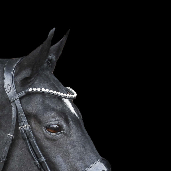 Diamante crystal browband - (black leather) - Lumiere Equestrian