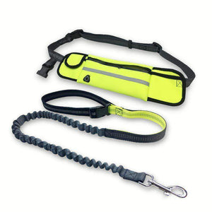 Yellow Hands free Bungee Dog Leash