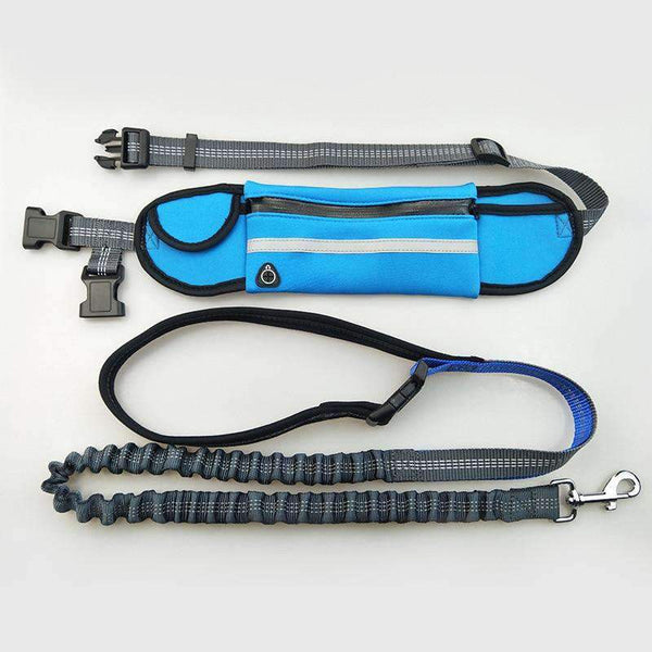 Blue Hands free Bungee Dog Leash