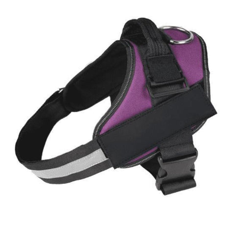 Reflective Collar Name Dog Harness - Purple