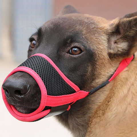 Best Anti Bite Dog Muzzle For Bark Bite & Chew Training - RhinocerosX