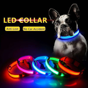 USB Charging Led Dog Collar-RhinocerosX