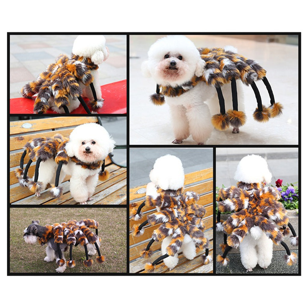 Spider Dog Party Costume - pimpapet  sc 1 st  pimpapet : dog in a spider costume  - Germanpascual.Com