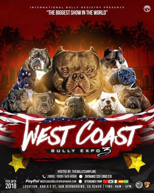 West Coast Bully Expo 4