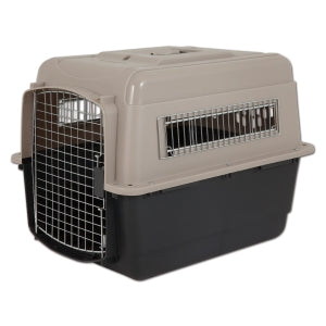 pitbullkennel