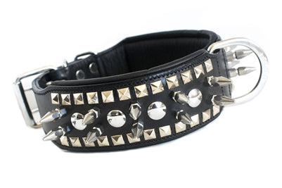 CESAR BUCKSKIN EXTENDED SPIKE DOG COLLAR
