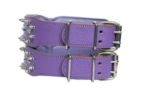 Purple Dyed Cesar Buck Skin Collar