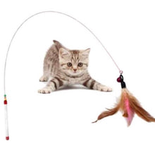 Cat Dancer Feather Toy