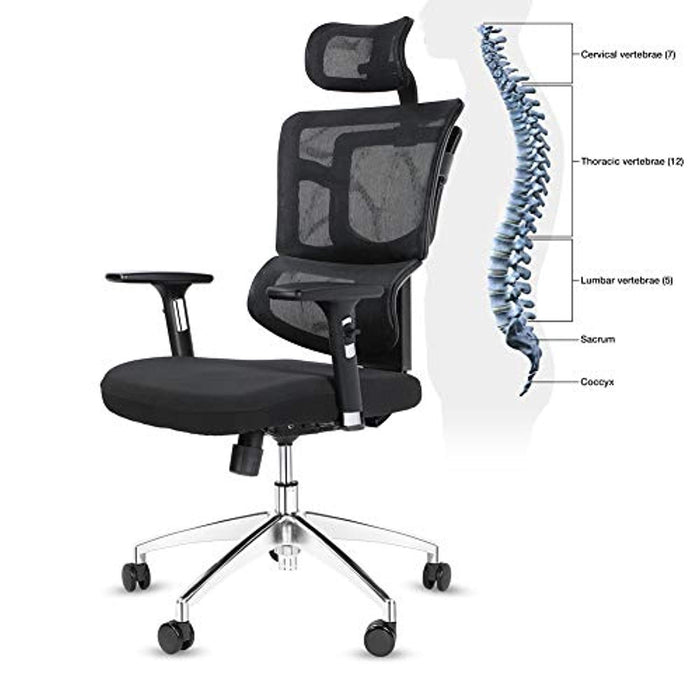 Lv. life Ergonomic Office Desk Chair High Back Mesh Desk Chair with Adjustable Arm Rests Computer Chair Height Adjustable and Head Support 3 Adjustable Tilt Tension - Black