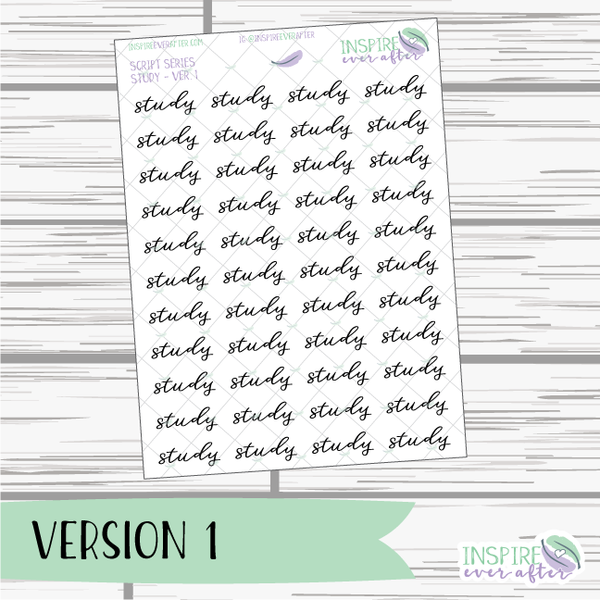 Study ~ Script OR Print ~ Script Series ~ Planner Stickers