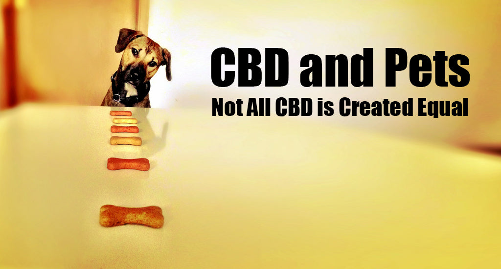 cbd-and-pets-not-all-cbd-is-created-equal