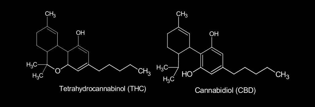 Difference-Between-THC-and-CBD