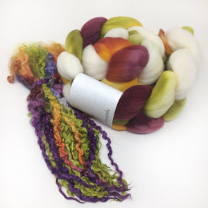 Spinning Sets - Joyous - Teeswater and Merino