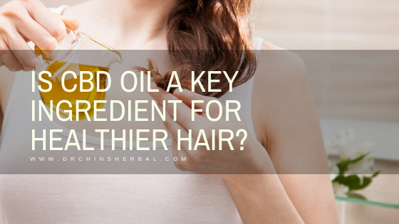 Is CBD Oil a Key Ingredient for Healthier Hair?