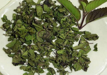 Organic Holly Basil Dry