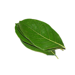 Organic Jackfruit leaves