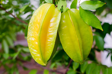 Organic Star fruit
