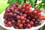 Organic Red Flame Grapes