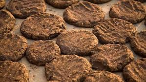 Indian Holy  Cow dung cakes