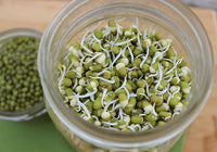 Organic Moong Sprouts
