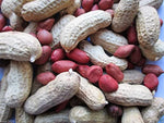Organic Groundnut with shell (Red)