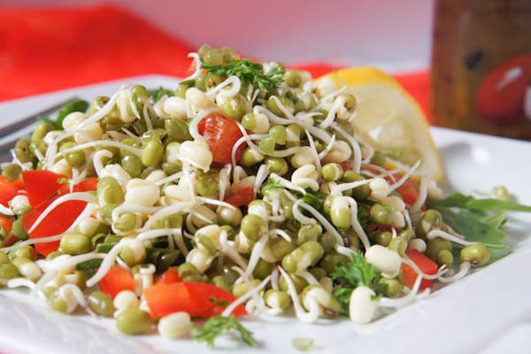 Organic Moong Sprouts & Fresh Veggies  Salad Pack