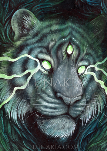 Three Eyed Tiger : Art Print