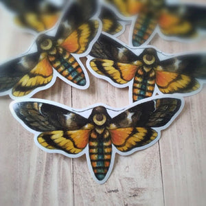 Moon Hawk Moth - Sticker