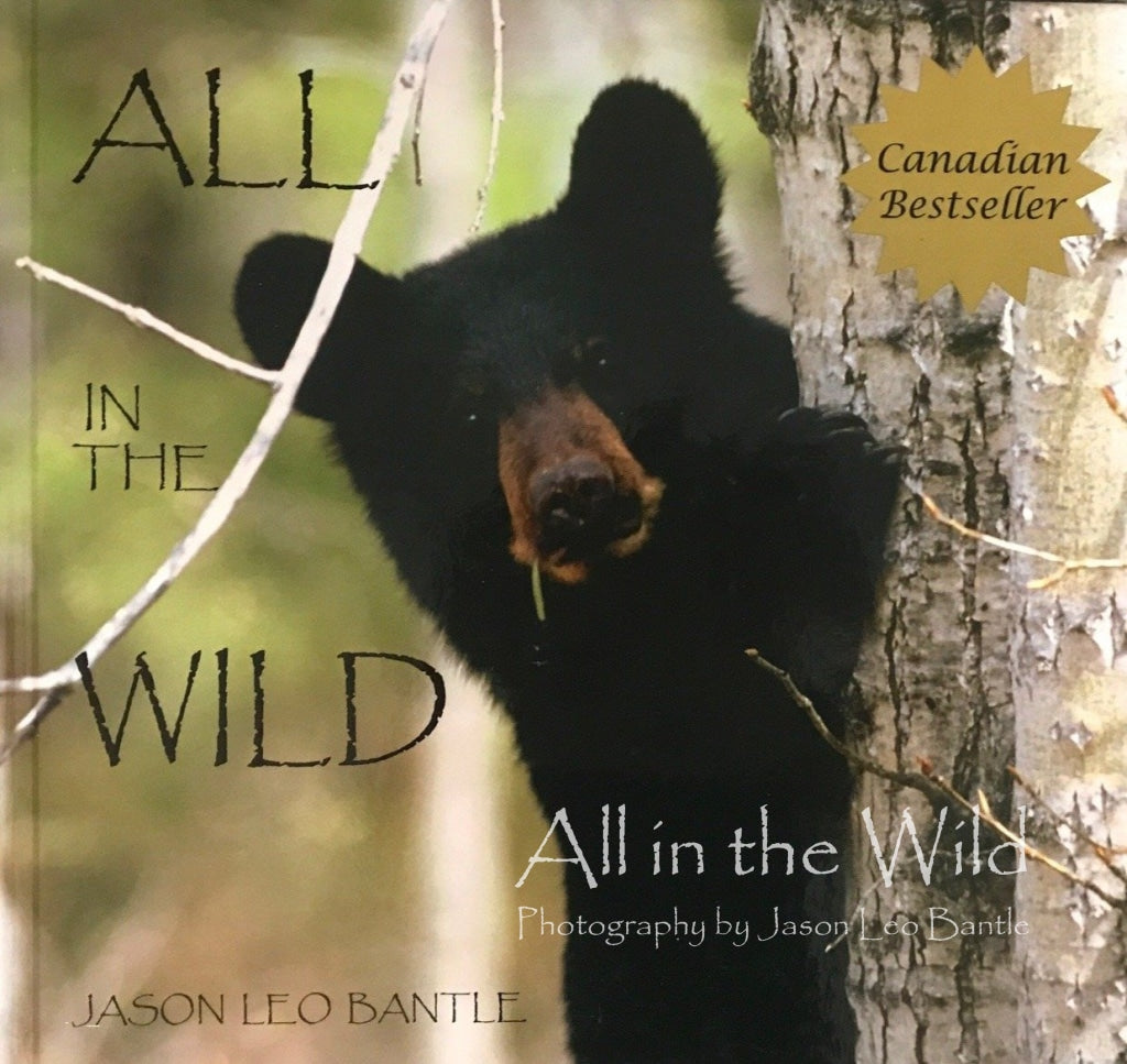 All in the Wild *SOLD OUT*