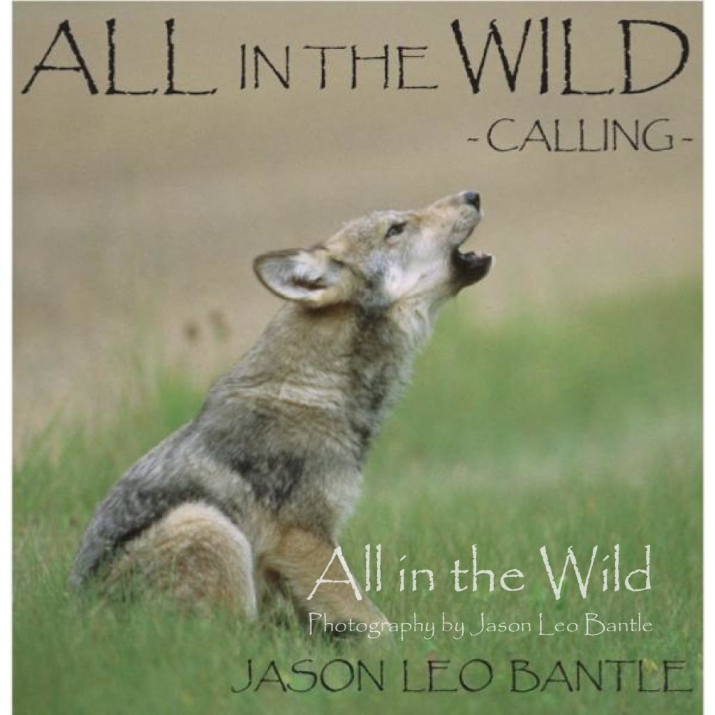 All in the Wild: Calling - All in the Wild