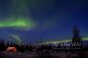 Under the Aurora All in the Wild Regular / Natural Wood Frame / 5x7 Photo