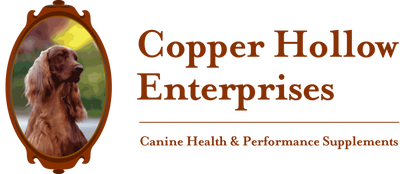 Copper Hollow Enterprises Inc