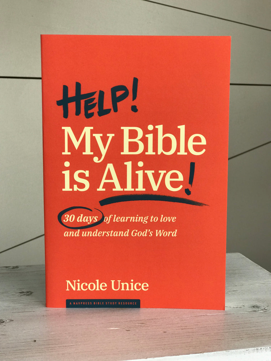 My Bible Is Alive Book