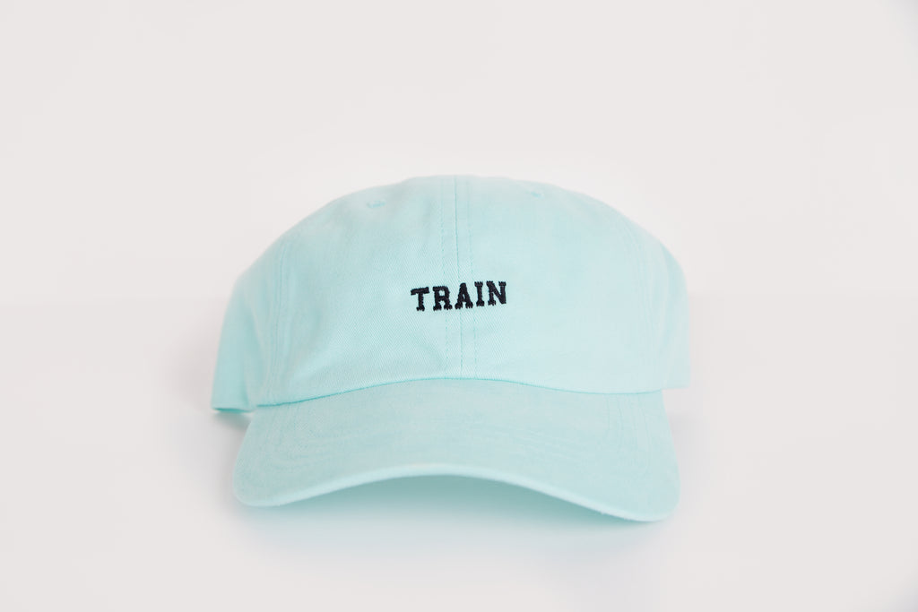 TRAIN Dad Hat