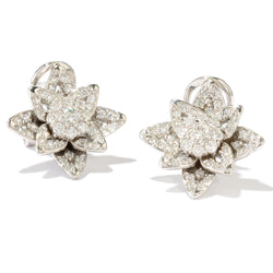 Platinum Plated Sterling Silver & Cz Star Earrings