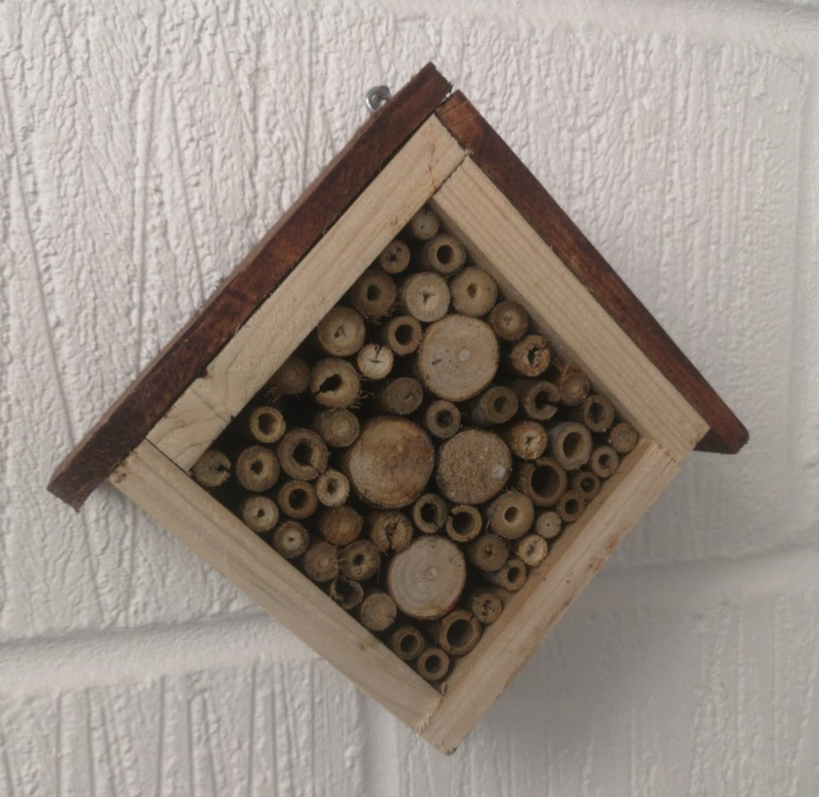 Insect home - A home for bug