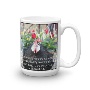 Don't Worry About My Coffee Consumption - Mug