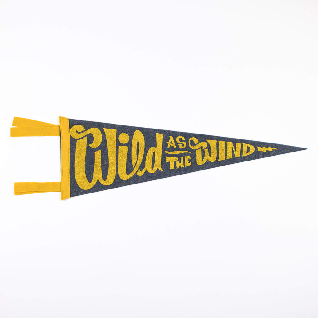 Wild as the Wind Baseball Pennant