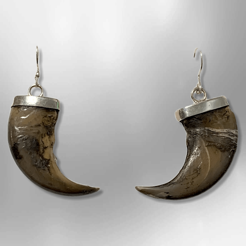 Sterling Silver Handmade Genuine Bear Claw Hook Dangle Earrings - Kachina City