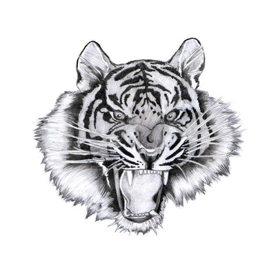 roaring tiger temporary tattoo