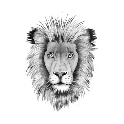lion temporary tattoo design tattooicon