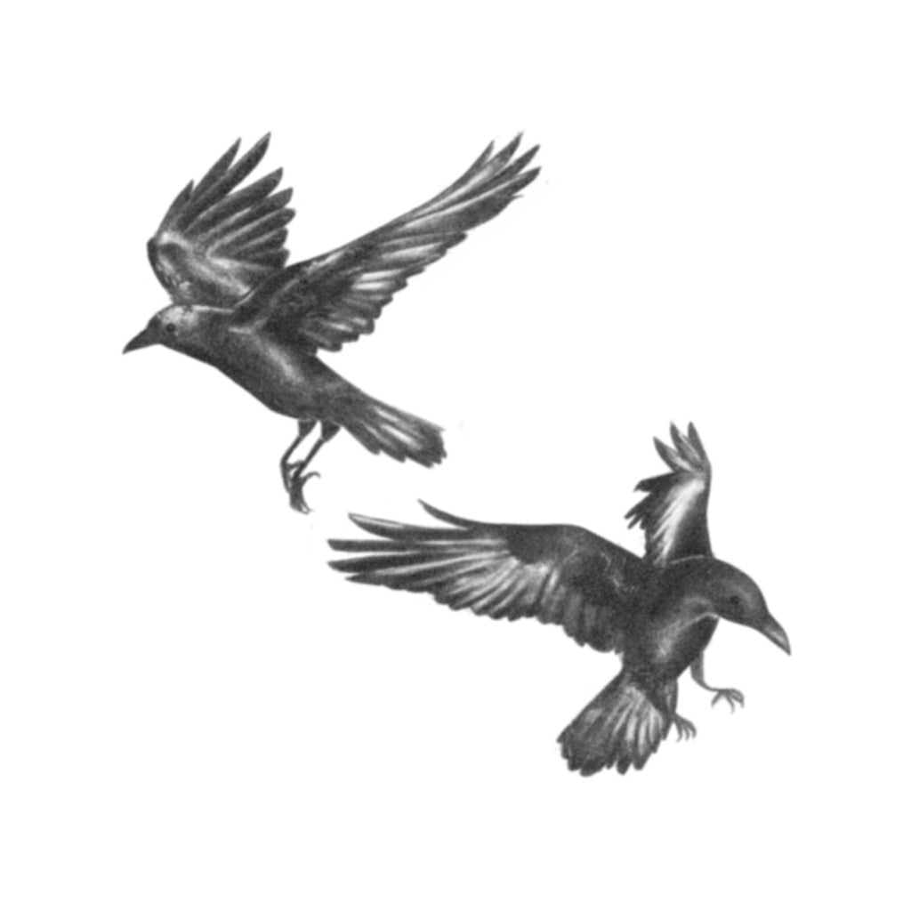 huginn and muninn tattoo