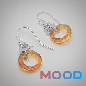 Playful Mood - Dolphin earrings with crystal loop in Silver